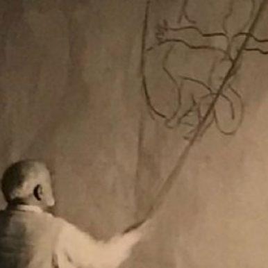 Matisse-web